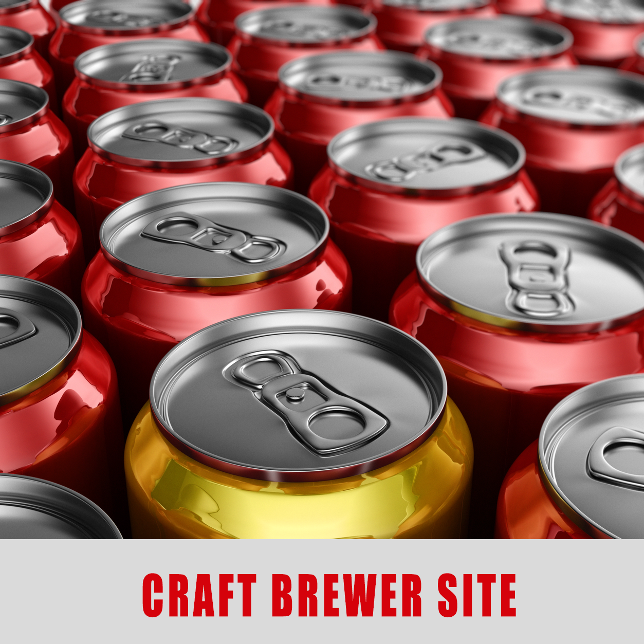 craftbrewersiteImage